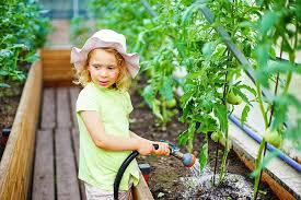 garden watering systems liberatum