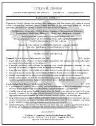 Legal Resume Templates Stunning Legal Resume Format Impressive Copy And Paste Resume Template Lovely
