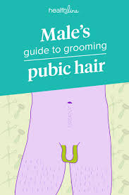 Pubic Hair Trimming Designs Manscaping For Guys Designs Removal Tips Aftercare And More