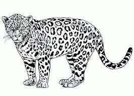 Small Picture Cartoon Cheetah Coloring Pages Get Coloring Pages