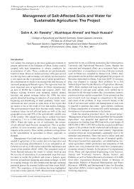 respiratory system essay nursing diagnosis