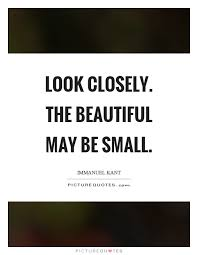 Small Beautiful Quotes Best of Look Closely The Beautiful May Be Small Picture Quotes