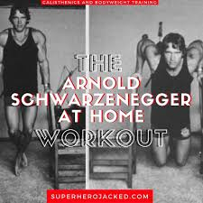 arnold schwarzenegger home workout