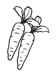 Vegetables Carrot coloring page 1 carrots coloring pages printable coloring pages design on coloring page of a carrot