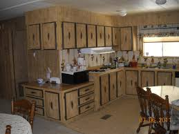 Beautiful Replacement Kitchen Cabinets For Mobile Homes Shining Design 28 Kitchen  Astonishing Home Great Pictures