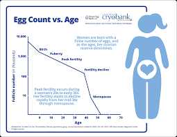 How Age Affects Ovarian Reserve And What You Can Do