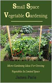 small space vegetable gardening micro