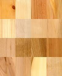 Древесина Википедия 16 видов древесины 1 pinus sylvestris Сосна 2 picea abies Ель 3 larix decidua Лиственница 4 juni s communis Можжевельник