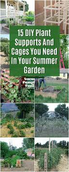 garden cages. Simple Garden 15 DIY Plant Supports And Cages You Need In Your Summer Garden