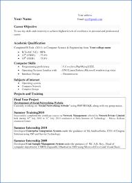 It Resumes 100 Best Resume Examples For Freshers SampleResumeFormats100 51