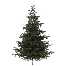 EVERLANDS NORDMANN FIR P.E. ARTIFICIAL CHRISTMAS TREE 6FT