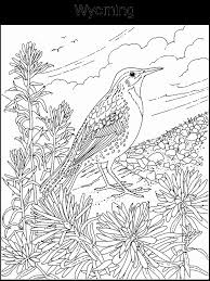 Small Picture Hard Bird Coloring Pages Coloring Pages
