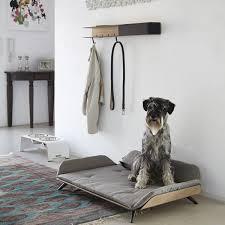 modern dog furniture. Modern Dog Bed Ideas Within Pet Decorating Furniture