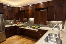 Universal Design Kitchen Cabinets Universal Design Kitchen Inexpensive Mikegusscom