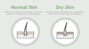 How to combat dry skin caused by acne medication. Can Dry Skin Cause Acne Possible Causes Treatments Bioclarity