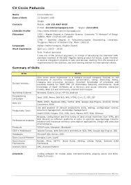 Junior Software Developer Resume Date Birth Java Developer Summary