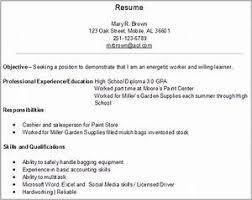 Job Resume Example Pointrobertsvacationrentals Com