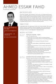 Financial Controller - Egypt Resume Example | Resume | Pinterest ...