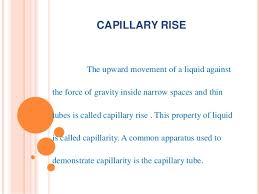 Power Point Presentation On Capillary Action
