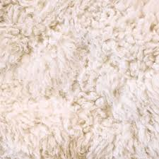 white carpet background. photo of white furry wool as abstract texture background top view stock modern new 2017 design ideas carpet