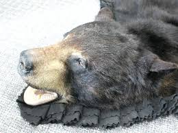 measuring at this gorgeous new black bear rug has beautiful thick fur double felt border rugs for craigslist