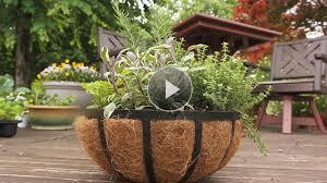 Small Container Garden Design Ideas Home Fabulous Plans For Container Garden Plans Pictures