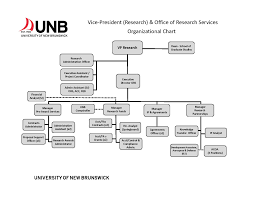 roles and responsibilities vp research unb vice president research and office of research services organizational chart
