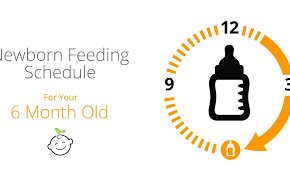 6 Month Old Feeding Schedule Baby Earth
