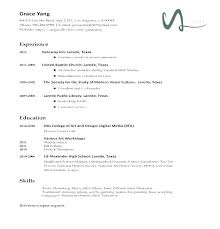 Resume Types Magnificent Types Of Resume Formats Different Resume Samples Different Type Of