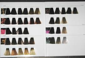 Inoa Supreme Color Chart Loreal Inoa Hair Color Swatch Book New Full