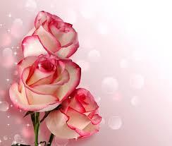 600+ Free Birthday Bouquet & Birthday Images - Pixabay