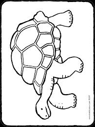 Schildpad Kiddicolour