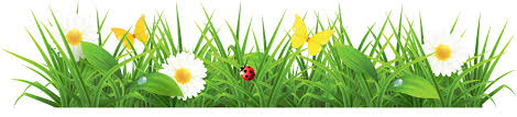 Image result for community garden clipart