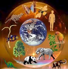 Сочинение рассуждение на тему Наша планета Земля  Наша планета Земля