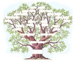 Dessin Dessin Arbre Genealogique Vierge Gratuit Imprimer Galerie Dessin Dessin Arbre Genealogique Vierge Gratuit Imprimer Galerie CreationL