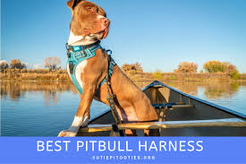 Juxzh Soft Front Range Dog Harness 3m Reflective No Pull