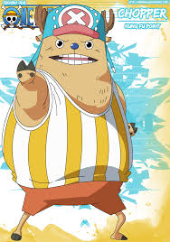 chopper has the human fruit model giant onepiece