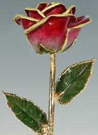 2 Tone Red 24k Gold Rose By Living Gold Real Rose Dipped In