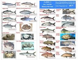 Florida Freshwater Fishing Regulations Chart 54 Studious Sea Fish Identification Chart