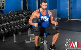 hiet fat loss workout nutrition program