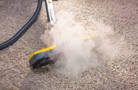 carpet steam cleaner. carpet steam cleaner l