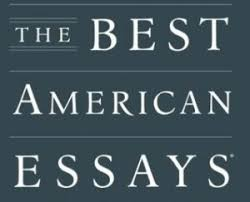 "kirie s ""getting a life"" nominated for best american essay kirie  the best american essays in a dark time kirie pedersen"