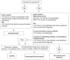 Full Text Urinary Tract Infections In Patients With Type 2
