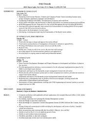 It Consultant Resume Sample Senior Business Independent