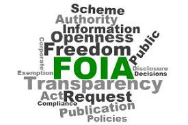 Image result for Freedom of Information