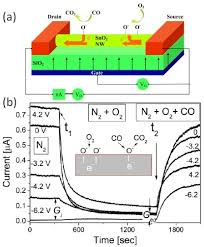 a a schematic illustration of the nanowire fet gas se open i a a schematic illustration of the nanowire fet gas sensor b