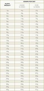 Dog Food Chart By Weight And Age Feeding Guide