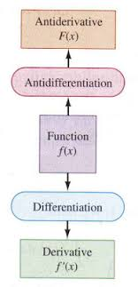 Pirates Revolutionaries The Antiderivative In Edwards