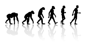 evolution of man essay evolution and creativity why humans triumphed wsj