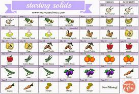Introducing Solids To Baby Chart Pin By Meg Holt On Baby Holt Baby Food Recipes Baby Solid